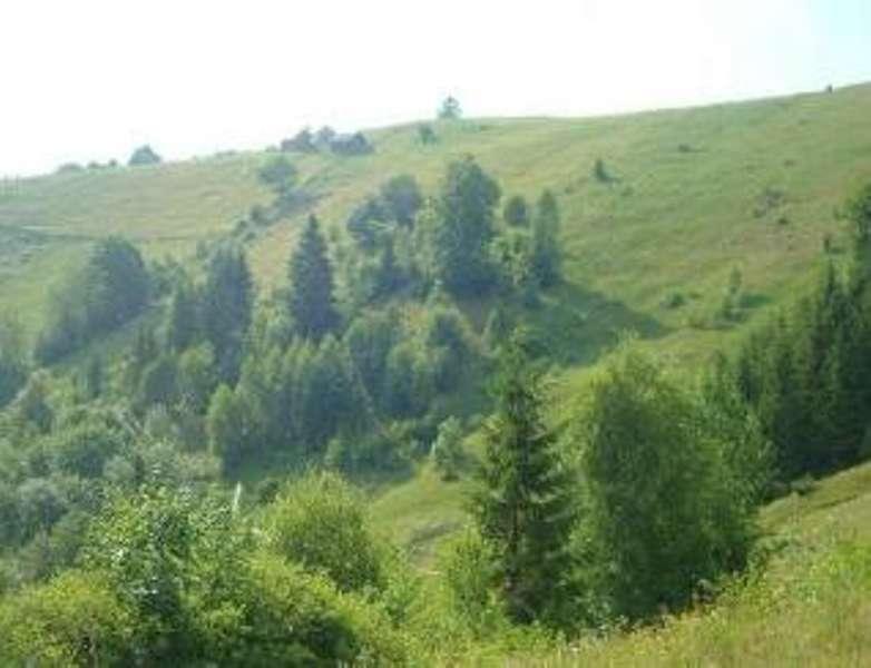 продам земельный участок  Малый Рожин