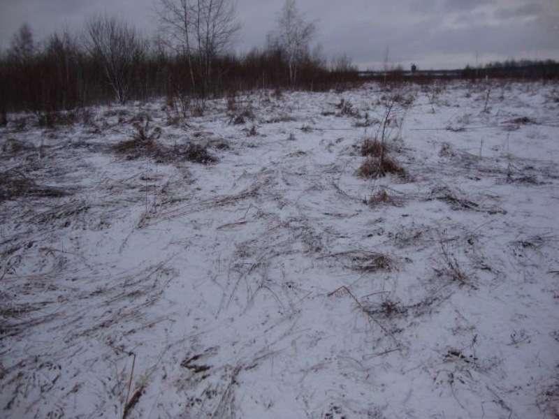 продам земельный участок  Старые Куты