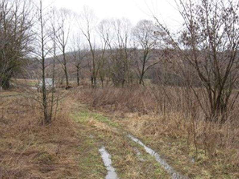продам земельный участок в Рожнове