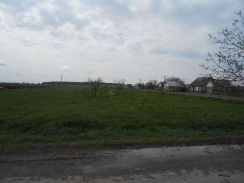 продам земельну ділянку в Концові