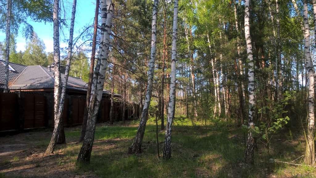 продам земельну ділянку в Хотянівці