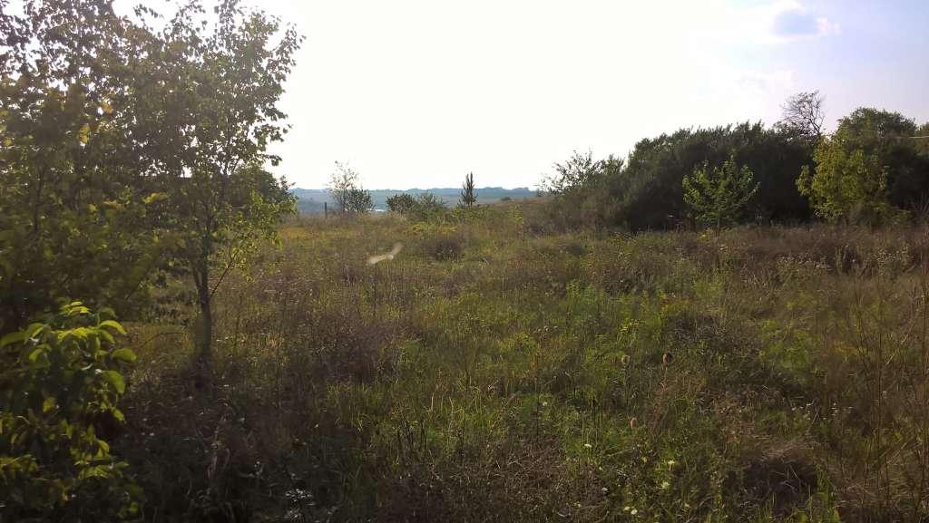 for sale land  Vasylkiv