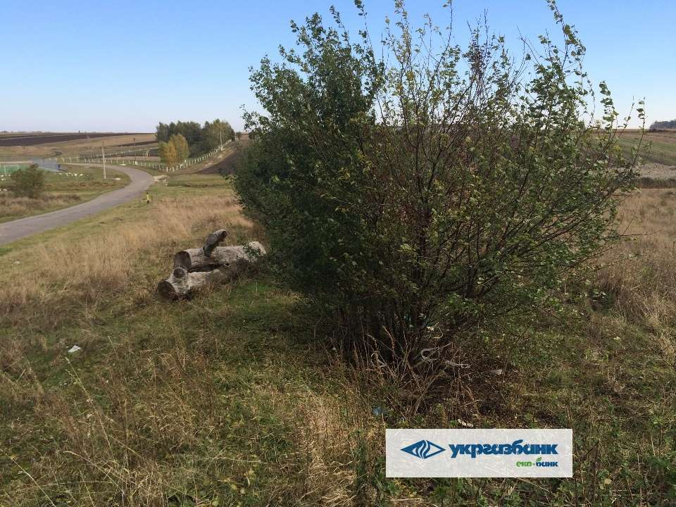 for sale land Viktorivka